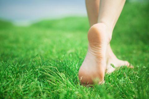 DIABETIC FOOT PROGRAMS
